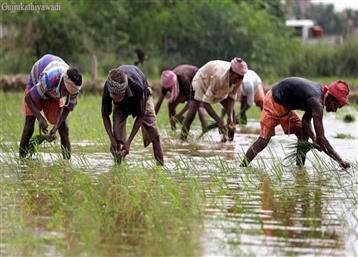 PM किसान: अप्रैल-जुलाई की किस्त आने में लग सकता है और वक्त, इस वजह से हो रही देरी
